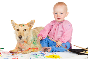 Pet Stain and Odor Removal West Hollywood